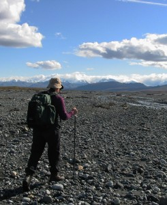 DCC submits comments on Denali Trails Plan scoping